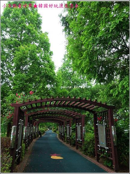 牙山神井湖水公園 (5).JPG