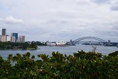 Sydney Harbour from Garden Island (robertshea40) Tags: sydneyharbour gardenisland