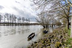 Bords de la Loire - 3/11 (Emmanuel Cattier -) Tags: tours loire laloire borddelaloire
