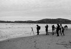 Koekohe Beach (Jim Davies) Tags: newzealand slr film monochrome analog 35mm photography kodak olympus om10 southisland otago analogue aotearoa southland moeraki 400asa bw400cn c41 chromogenic koekohe veebotique