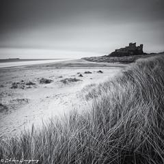 Bamburgh Sunrise B&W (Photography by Chris Gregory) Tags: longexposure blackandwhite seascape bamburghcastle canonef1740mml leefilters canon5dmkii leebigstopper