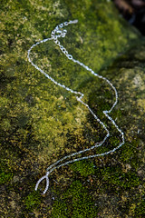 Wishbone pendant on moss (lilyandquinn) Tags: silver sparkle luck lucky cz wish sparkly amulet goodluck pave wishbone luckycharm sterlingsilver cubiczirconia luckcharms