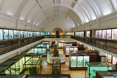 DSC01798-Edit.jpg (sgoldswo) Tags: uk london foresthill hornimanmuseum sonya7rii zeissbatis25mmf2