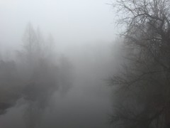 Foggy Morning (-Jeffrey-) Tags: morning mist lake nature weather fog outdoors mirror mirrorlake foggy delaware dover soop sooc iphonography iphoneography