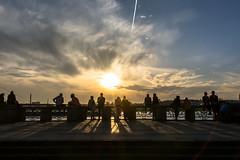 Sunset Watchers (Moritz Padberg) Tags: sunset silhouette dusseldorf dsseldorf duesseldorf