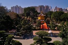 Nouveaux territoires - jardin Nan Lian 9 (luco*) Tags: china new garden pagoda chinese jardin hong kong chinois nan territories chine lian pagode territoires flickraward flickraward5 niuveaux