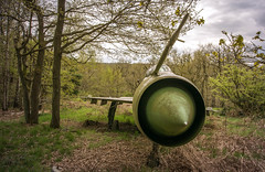 DSC_8040 (Photographe-Runner) Tags: plane lost decay avion mig urbex abandonn