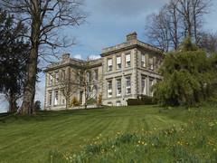 Ragley Hall in Spring, Warwickshire, 30 April 2016 (AndrewDixon2812) Tags: garden hall spring south lawn daffodil arrow warwickshire hertford faade stratford roberthooke ragley alcester