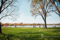 Washington, D.C. | Instagram: @bayanalsadiq (Bayan AlSadiq) Tags: travel flowers nature beauty weather cherry washingtondc dc washington blossom   saudiphotographer