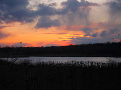 IMG_2130 (sjj62) Tags: sunset sky clouds lith s90 lakeinthehillsil