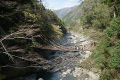 Kazurabashi suspension bridge over the Iya river (Iya Valley, Japan) (chinwenyus) Tags: coth abigfave coth5
