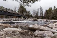 IMG_8598 (Juha Hartikainen) Tags: finland fi oulu kiiminki northernostrobothnia