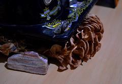 Composio - Composition (Valter Frana) Tags: composition flor seca pedra mquina composio nikond5100