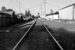 Train tracks (samdabull) Tags: blackandwhite om1 olympusom1 35mmcamera 50mmf14zuiko