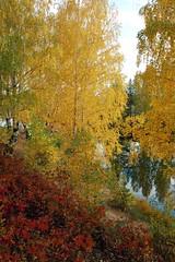 DSC_6080 (Rustam Bikbov) Tags: autumn september 2012    sverdlovskoblast