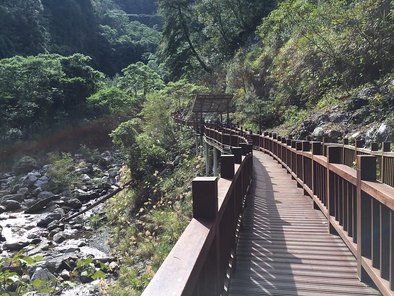 八仙山森林遊樂區-無障礙步道折返點