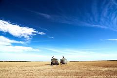Empty fields, Endless hours (dualiti.net) Tags: nature beautiful photography amazing scenery farm horizon silhouettes outback agriculture minimalism southaustralia naturelovers yorkepeninsula canon6d hardwickebay canonaustralia