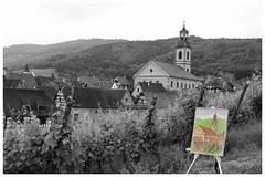 Riquewhir , Alsace , France. (sdupimages) Tags: france landscape alsace desaturation paysage partial riquewhir