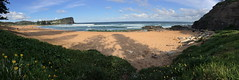 Avalon beach panorama (NinianLif) Tags: panorama northernbeaches avalonbeach pittwatercouncil iphone6