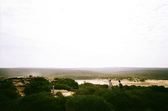 Marley Beach (timothybrennan) Tags: summer film 35mm bush sydney olympus 35mmfilm nsw royalnationalpark olympusxa3