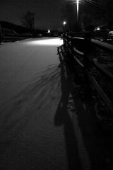 Snow Road in Streetlight (imjackhandy) Tags: road morning snow streetlight haiku knoxville walk tennessee 575 theothermorning meadowlarklane theothermorningitstartedtosnow