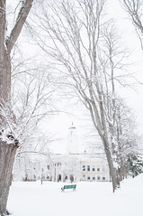 South Quad (Grant is a Grant) Tags: winter snow campus novascotia ns snowstorm january kitlens wolfville 1855 universityhall acadia acadiauniversity acadiau nikkor1855mm nikond90