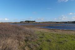 Zandvoort (bas.mohr) Tags: bergen duinen castricum pwn schoorl kennemer duinreservaat noordhollandse