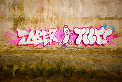 Tober Vs Tilt (Steve Taylor (Photography)) Tags: city pink red newzealand christchurch brown plant streetart green art texture grass wall digital graffiti weeds mural tag cartoon sausage running canterbury wiener tober nz southisland cbd frankfurter