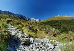 20160208-15-Rees-Dart day 1 - Rees Valley pano (Roger T Wong) Tags: travel newzealand panorama mountains trek outdoors nationalpark walk pano hike np bushwalk tramp mtaspiringnationalpark 2016 ptgui reesdart southisand reesvalley sony2470 rogertwong sel2470z sonyfe2470mmf4zaosscarlzeissvariotessart sonya7ii sonyilce7m2 sonyalpha7ii