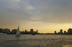 View from Sofitel / Cairo, Egypt (Wander Gal) Tags: africa travel vacation hotel view egypt el nile cairo sofitel 2015 gezirah