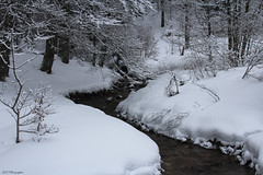 L'eau dans tous ses états... (Quentin Klein) Tags: la eau lac neige lorraine blanc vosges 2016 bresse blanchemer