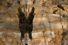 2016-03-15-Campo-001-mariposa o demonio (Masjota65 (J.Miguel) +400.000 vistas, gracias) Tags: reflection water butterfly agua eau reflet papillon reflejo demon mariposa demonio dmon