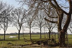Het dorpje Garnwerd aan de Reitdiep op de achtergrond (Gr.) (Maarten Kroon) Tags: groningen reitdiep garnwerd grunn