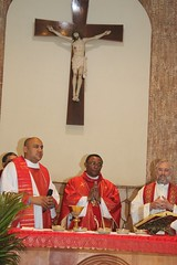 Frei Osmar, Dom João Muniz e Dom Armando 081 (vandevoern) Tags: brasil xingu pará altamira bispo franciscano bacabal vandevoern