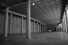 Empty Barangaroo (PhillMono) Tags: new white black monochrome sepia wales concrete grey nikon harbour space empty south gray pillar sydney australia column dslr darling d7100 barangaroo