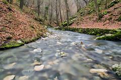 Paskova Pecina, Majdanpek (Marko (M) Popovic) Tags: nature water nikon long exposure serbia cave 5100 priroda voda srbija pecina reka majdanpek