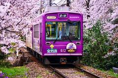(DSC_3493) (nans0410(busy)) Tags: japan cherry outdoors scenery kyoto blossom railway   sakura  kansai    utano  randen narutaki    katabiranotsuji  kitanoline  arashiyamaline kinkiarea