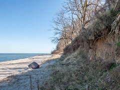 Steilküste.jpg (Tini X) Tags: ostsee meer see urlaub schwan strand steine