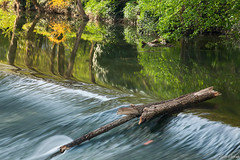 spring morning - II (Ralph Oechsle) Tags: morning reflection water river spring waiblingen rems