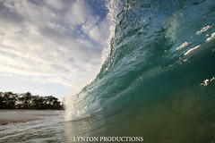 IMG_0060 copy (Aaron Lynton) Tags: beach canon big barrel wave 7d spl makena shorebreak lyntonproductions