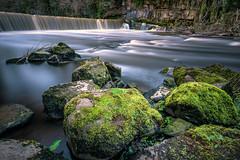 The Weir at Cramond Mill (roseysnapper) Tags: longexposure scotland waterfall moss rocks edinburgh weir circularpolarizer riveralmond cramond greatphotographers leefilters nikond810 nikkor1424f28 leebigstopper cramondmill