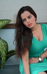 Bollywood Actress Meghna Patel Photos Set-4-HOT PHOTOS (22)