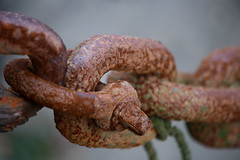 The weakest link (shaunmartin366) Tags: rust chain corrosion shackle seized