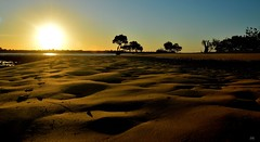 DSC_0025 (RUMTIME) Tags: light sunset beach nature sand mangrove queensland coochie coochiemudlo