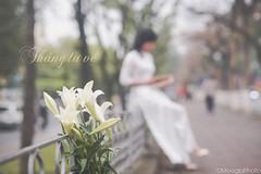 Ma hoa loa kn (Meogia Photography) Tags: flower girl vietnamese vietnam illy hanoi nam hoa loa aodai t thng ni o di h vit kn meogiaphoto
