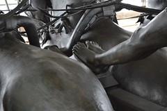 Feet (Matt From London) Tags: sculpture feet statue quadriga constitutionarch wellingtonarch hydeparkcorner charioteer adrianjones