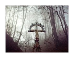 Hristos a inviat! (alex_lulu) Tags: film analog forest cross jesus grain foggy 35mmfilm romania halfframe olympuspenee colorfilm fixedfocus ruralromania dmparadies200