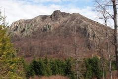 a Szekatra hegycscs / the Sectura hilltop (debreczeniemoke) Tags: mountains landscape spring hiking hegy transylvania transilvania tavasz mountaintop tjkp erdly tra hegycscs szekatura gutinhegysg muniiguti sectura muniigutin olympusem5