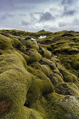 Skaftareldahraun (Rkitichai) Tags: nature landscape iceland moss roadtrip wanderlust mossy lavafield travelphotography landscapephotography travelnutzmn skaftareldahraun