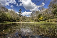 Lydney Park, Gloucestershire, UK (Christopher Smith1) Tags: park uk water horizontal gardens landscape pond gloucestershire foliage feature lydney